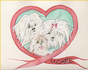 United Coton de Tulear Association for Rescue and Education