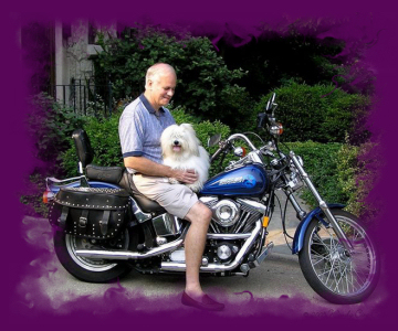 Jeff and His Two Harleys